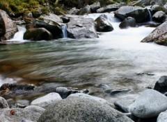 Nature rivière pyrénées