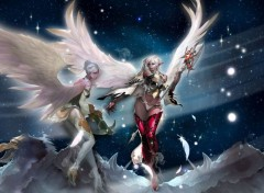 Video Games Plumes d'anges