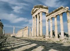 Voyages : Asie syria