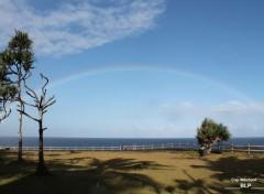 Nature Sud de la Réunion 974