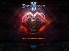 Video Games Saint Valentin Terran