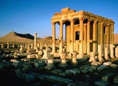 Voyages : Asie syrie