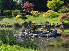 Nature Jardin zen