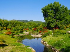 Nature Jardin Japonais dans la Bambouseraie d'Anduze
