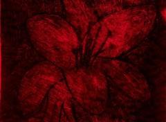 Art - Painting Fuchsia~Lilium