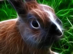 Animals lapin fractal