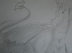 Art - Pencil Dragon