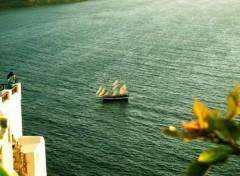 Nature Petit bateau