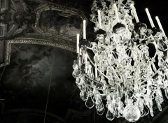 Trips : Europ Lumineuse Obscurité, Versailles