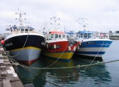 Bateaux port du guilvinec