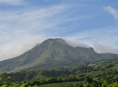 Nature Montagne Pelée (Martinique)