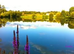 Nature Reflets 4