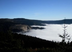 Voyages : Europe Black Forest