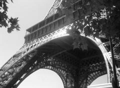Trips : Europ Sous la tour Eiffel