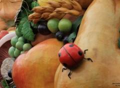 Nature Cinq fruits et légumes par jour!