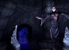 Jeux Vidéo Nocturne