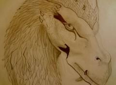 Art - Pencil Dragon-Eragon