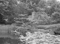 Nature Image sans titre N°315219