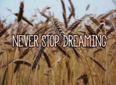 Art - Numérique Never Stop Dreaming'