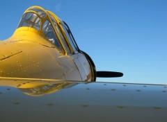 Avions T6