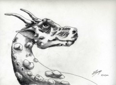 Art - Crayon Dragons de tout temps