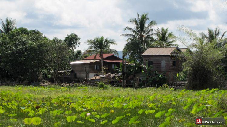 Wallpapers Trips : Asia Cambodia Riziere du nord du cambodge