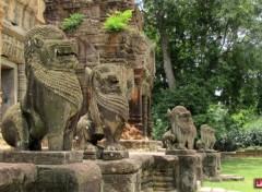 Voyages : Asie Temple de Preah Ko