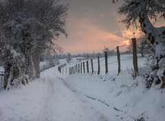 Nature chemin dans la neige