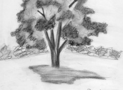 Art - Pencil autres dessin