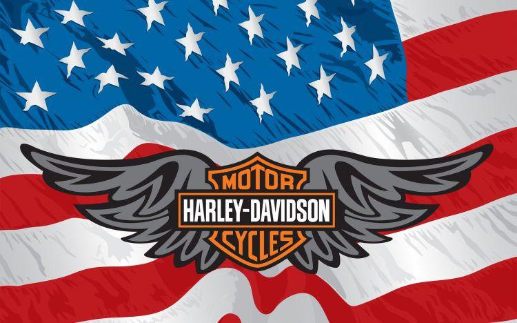 Wallpapers Motorbikes Harley Davidson Harley Davidson & American Flag