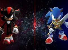 Jeux Vidéo Sonic et Shadow