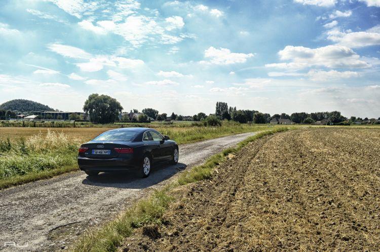 Fonds d'écran Voitures Audi Audi A5 TFSI