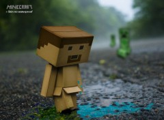 Video Games skin Minecraft
