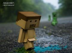 Jeux Vidéo skin Minecraft