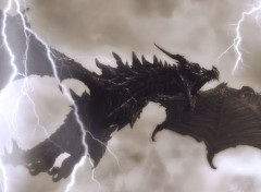 Video Games Alduin