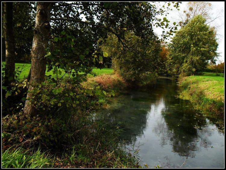 Fonds d'écran Nature Fleuves - Rivières - Torrents les marais de Sisonne