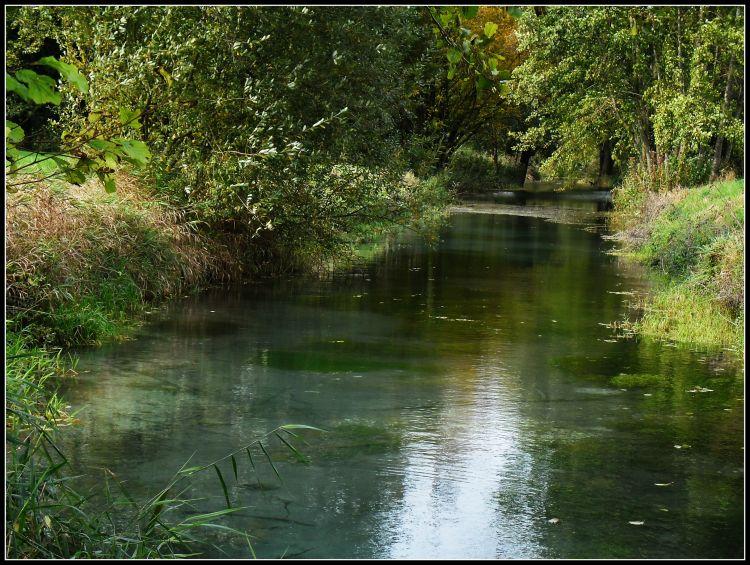 Fonds d'écran Nature Fleuves - Rivières - Torrents Marais de Sissonne