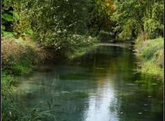 Nature Marais de Sissonne