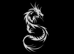 Digital Art Dragons