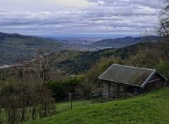 Nature les Vosges en automne