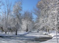 Nature Paysage d'Hiver au Québec