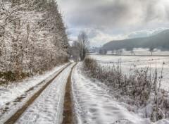 Nature encore le début de la neige