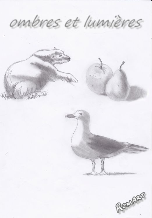 Fonds d'écran Art - Crayon Animaux - Divers Wallpaper N°324641