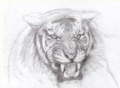 Art - Pencil Grr