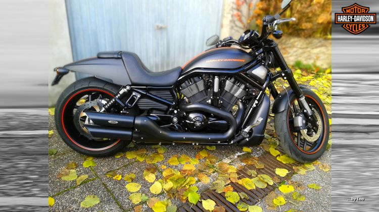 Wallpapers Motorbikes Harley Davidson NIGHT ROD SPECIAL 2012