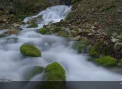 Nature Source du Bel Affreux