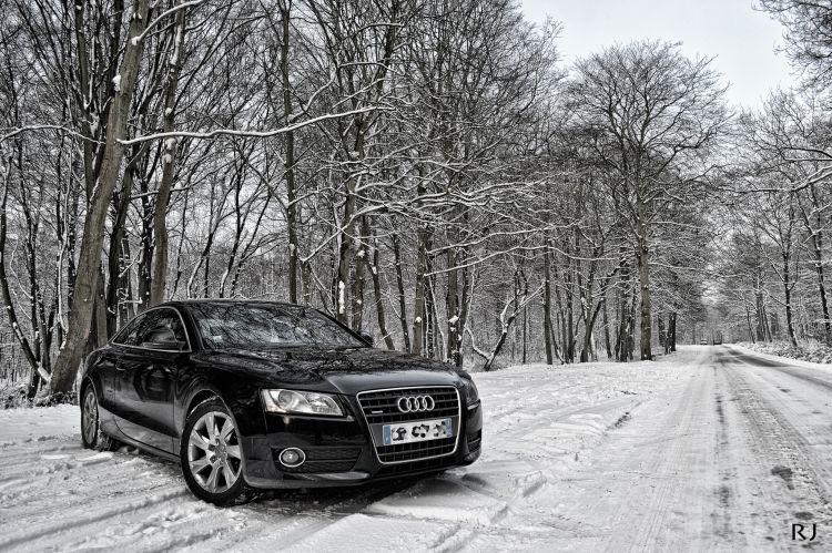 Fonds d'écran Voitures Audi Audi A5 snow