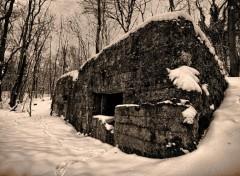 Nature Bunker