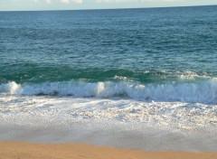 Nature El mar