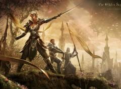 Jeux Vidéo The Elder Scrolls Online